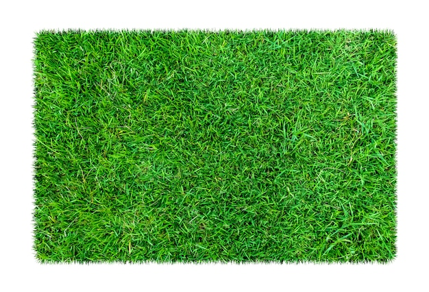 Зеленая трава. природные текстуры фона. свежая весенняя зеленая трава. изолированные на белом фоне