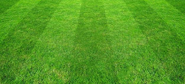 サッカーとフットボールのスポーツのための緑の芝生フィールドパターン背景。