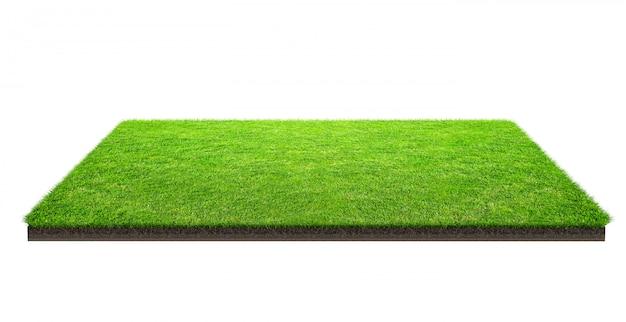Поле зеленой травы изолированное с путем клиппирования. спортивное поле. летние командные игры.