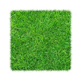 緑の草。自然な風合いの背景。新鮮な春の緑の芝生。
