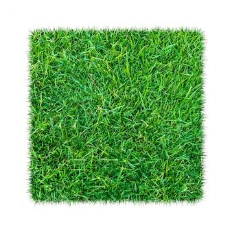 Зеленая трава. природные текстуры фона. свежая весенняя зеленая трава.