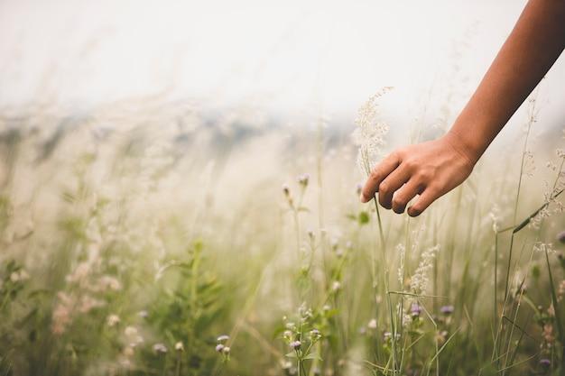 緑の芝生と山の上の少女の手