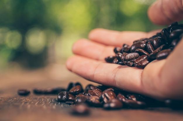 木製のテーブルにコーヒー豆を持っている手