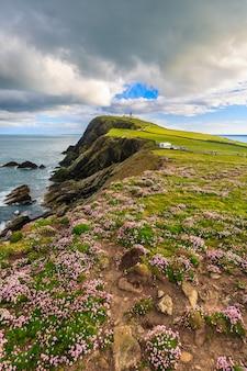 青い空、シェトランド諸島、スコットランドの下の崖の上の海ピンク