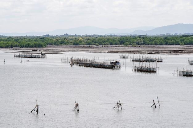タイ・チャンタブリ - 漁師の村の近くの海の動物農場