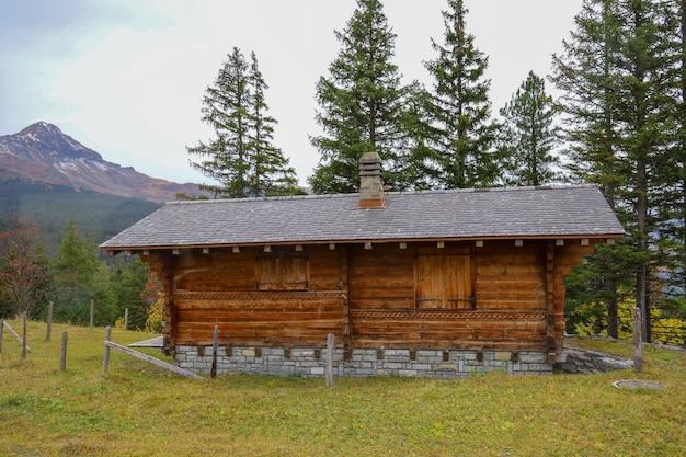 Вид на деревню в природе и окружающей среде в швейцарии