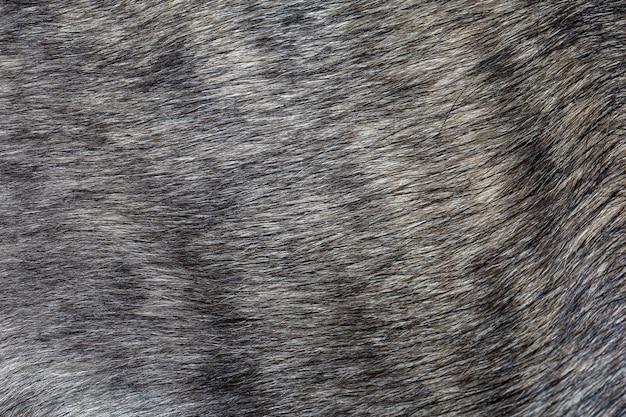 動物のパターンと背景の灰色の犬の皮を閉じる