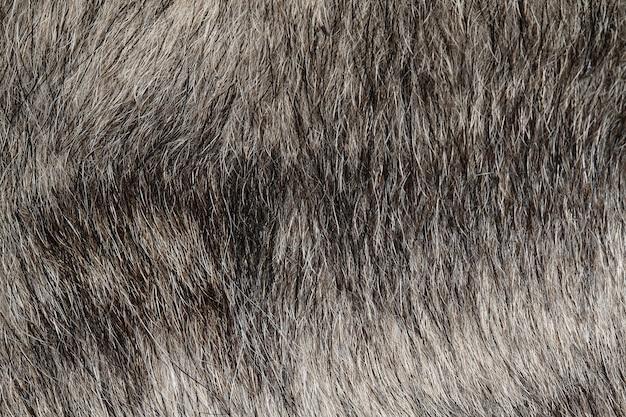 と背景の灰色の犬の皮膚を閉じる
