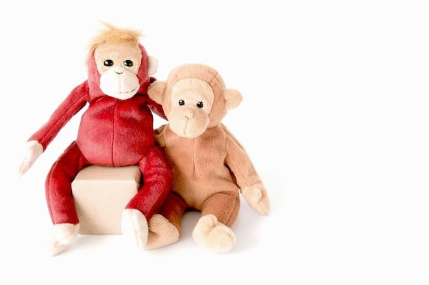 Пара обезьяны говорить, сидя в полу