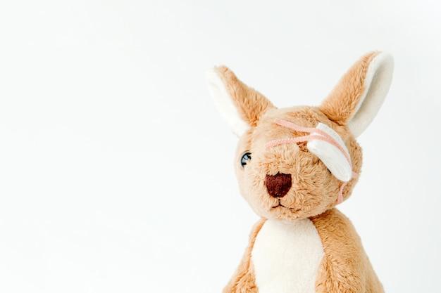 カンガルーは遊び心があり、事故に遭ったので、彼は包帯を使って医学的なそして怪我をした目を当てた。
