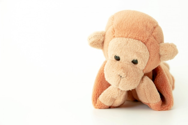 白地に小さな茶色の猿