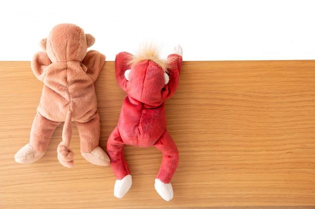 友情 - サルの一団が木の板に引っ掛かっている