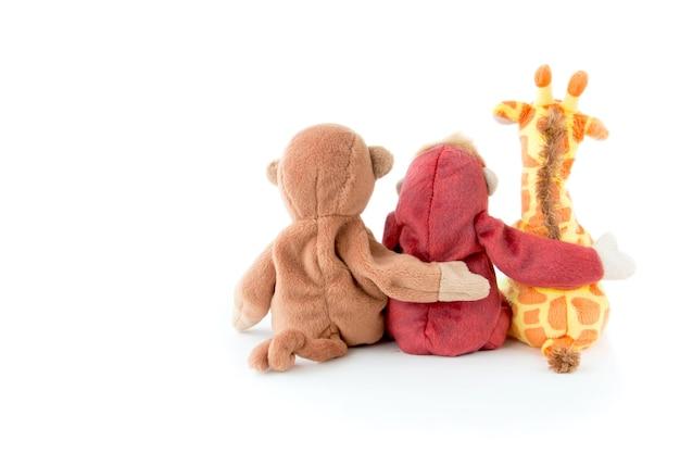 友情 - 友人とのかわいい猿が腕を抱えている