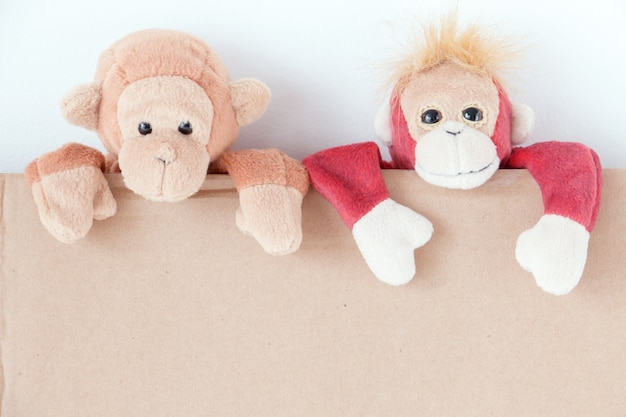 Пара обезьян озорной, они пытаются взбираться на картонную коробку.