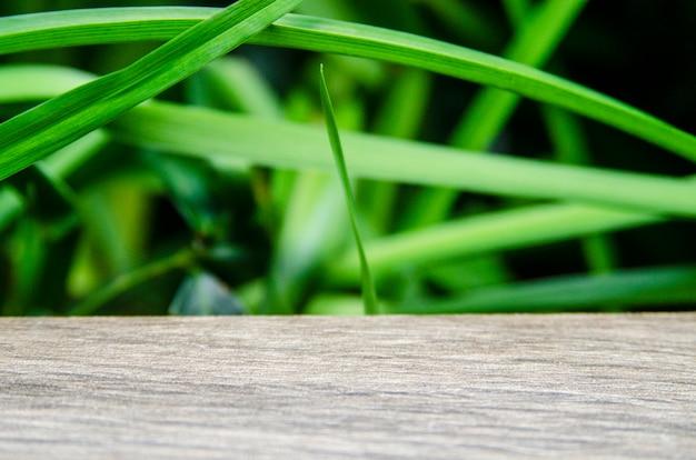 Деревянная пустая доска и рост зеленых ростков на фоне размытия