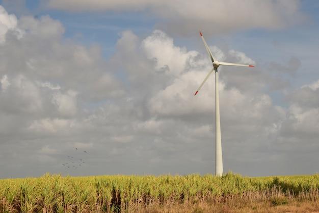青い空の下で風力エネルギー、再生可能エネルギーを生み出す風力タービンのある風の場。 - イメージ
