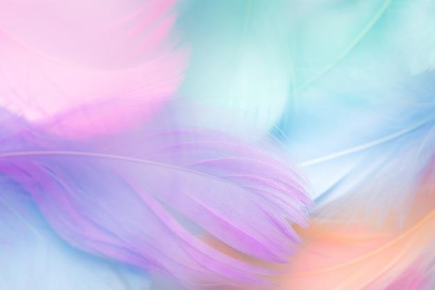 パステルカラーの羽の抽象的な背景
