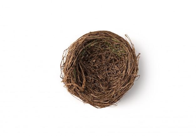Птичье гнездо на белом фоне