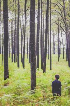 Человек гуляя в глубокий сосновый лес с большим рюкзаком