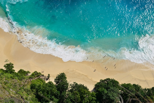 砂浜のビーチで海の青い海の波の空撮