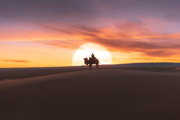 日の出、ゴビ砂漠モンゴルの砂丘を通過するラクダ。