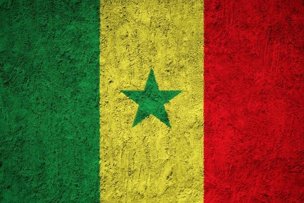 コンセプトウォールでセネガルの国旗を塗った