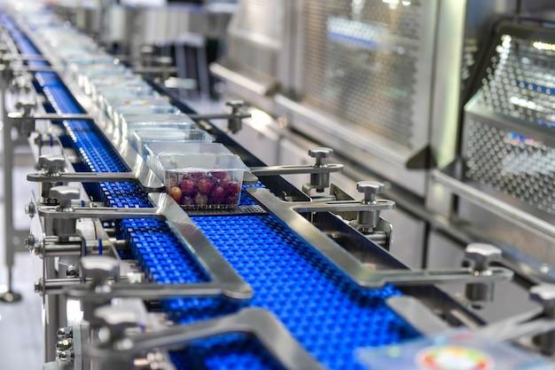 食品用の箱を自動コンベアシステムに移す