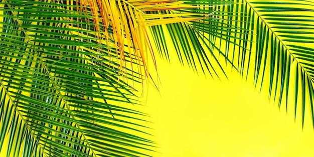 トロピカルパームは、黄色の背景を平らにする