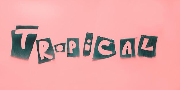 Слово тропические буквы из зеленых тропических листьев