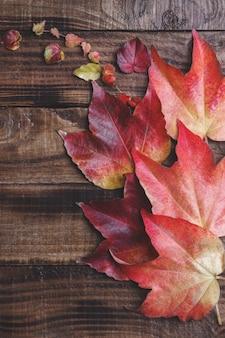 暗いビンテージ上の秋の紅葉
