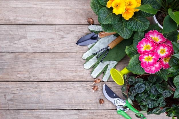 ガーデニングツールと花