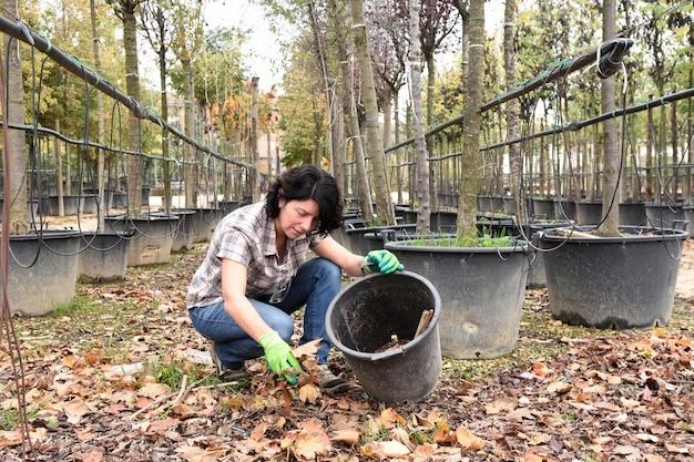 Женщина работает в садовом центре, собирая сухие листья