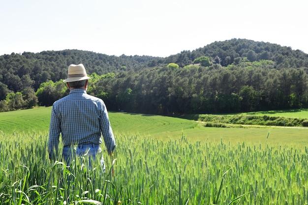 Фермер в пшеничном поле
