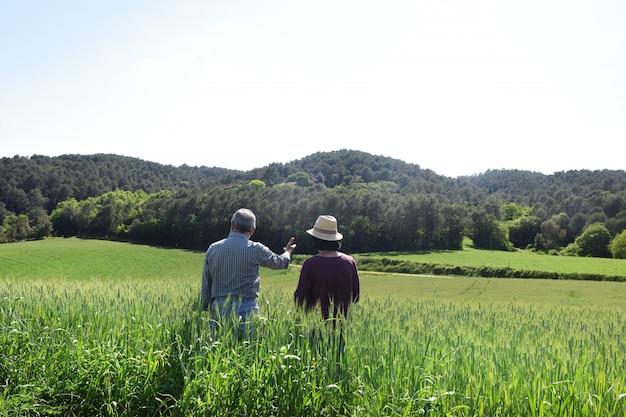 Пара фермеров в пшеничном поле