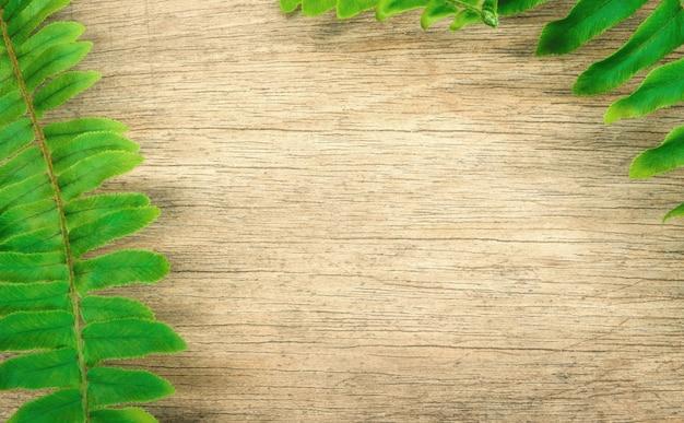 ファーンは木製の背景に葉。