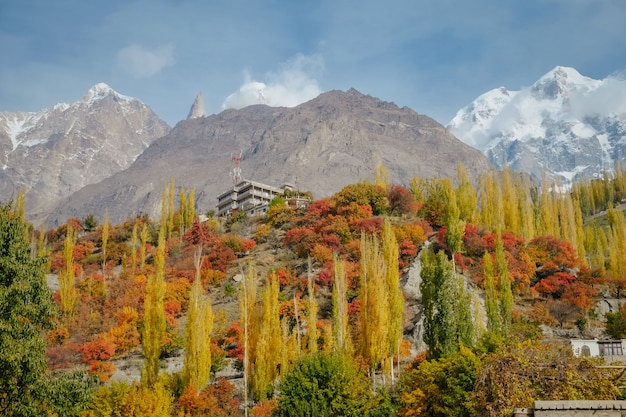 秋の色鮮やかな紅葉の森の木とカラコルム山脈の雪を頂いた山頂。
