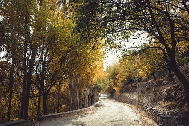パキスタンのギルギット・バルティスタンでの秋の風景。