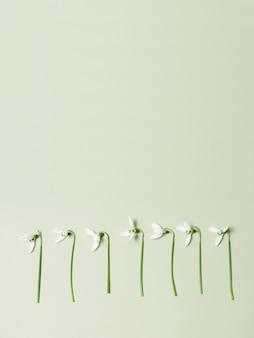 コピースペースと緑の背景に春の花。ミニマリストの概念