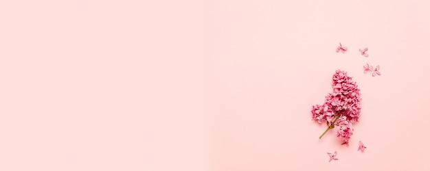 ピンクの背景にライラックの新鮮な明るい枝