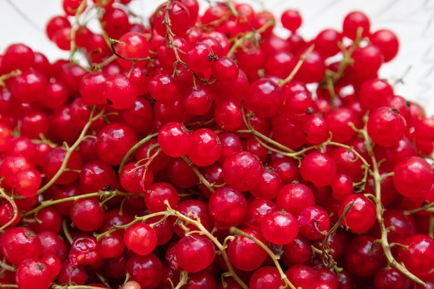 熟したジューシーな赤スグリの果実の背景。