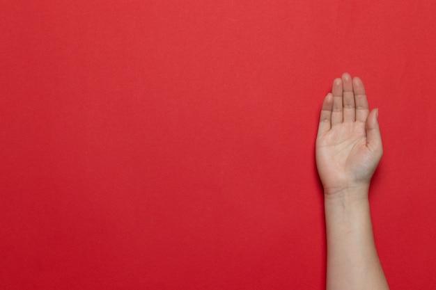 赤の背景にひらの女性白人きれいな手ジェスチャー