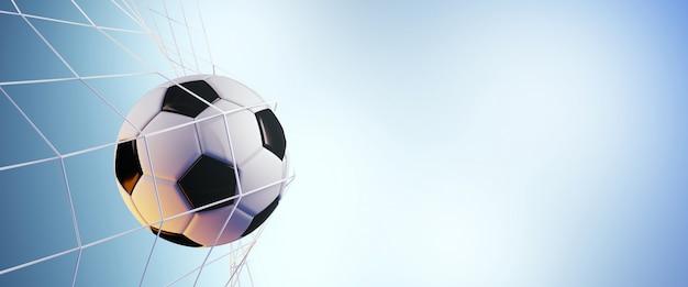 ネットでサッカーボール