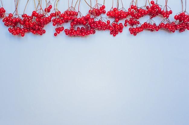 秋の組成。青い背景に赤いビバナムの果実で作られたフレーム。