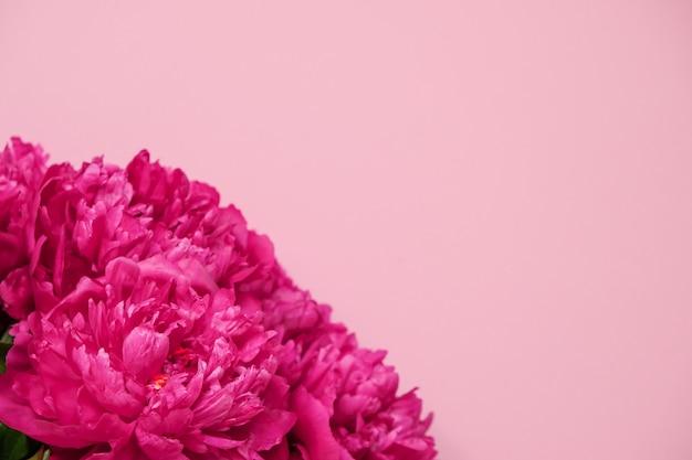 ピンクの背景の美しいピンクの牡丹の花束のクローズアップ。上面図。平干し