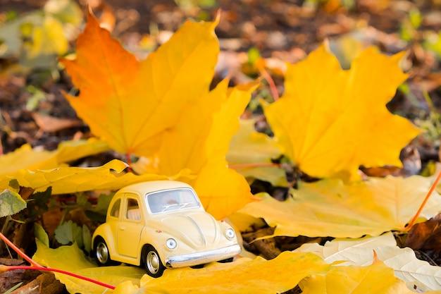 秋のカエデの葉に黄色のレトロなおもちゃの車。秋の旅行や休暇の概念。