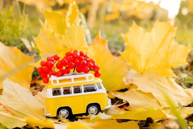 秋のカエデの葉にナナカマドの果実と秋のレトロな黄色のバンバス。面白いレトロなおもちゃの車。