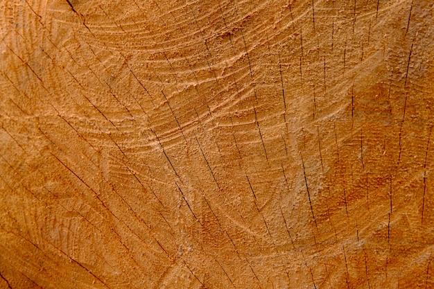 Текстура древесины фон, ретро обои фон, журнал крупным планом