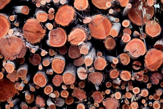 木の丸太の山の眺め、木材産業の結果。