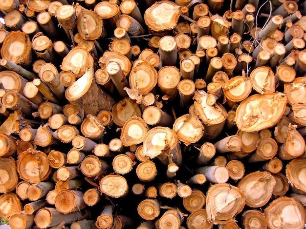 積み上げ木材の山。