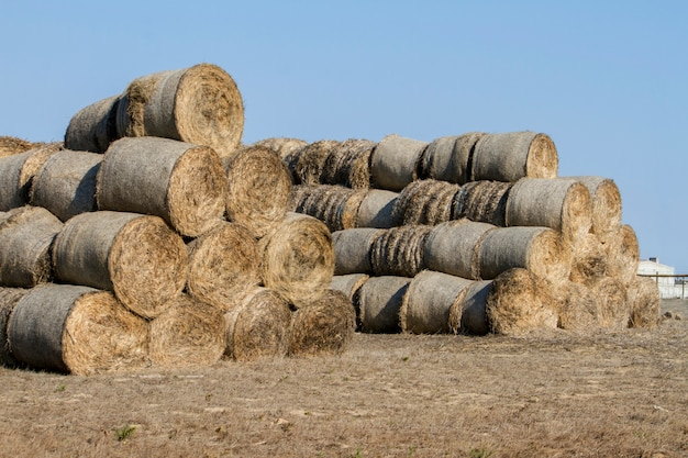 田舎の干し草の俵のスタックの表示。